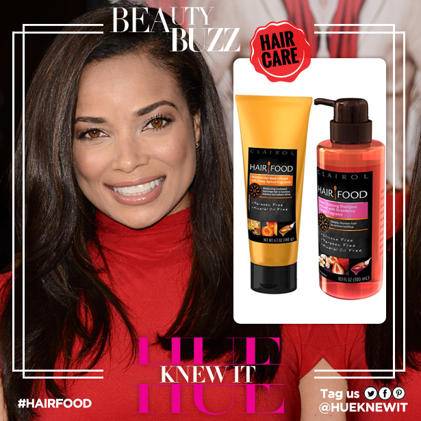 Dry Dull Hair, NOT An Option For Rochelle Aytes